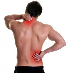 back-pain-lg-276x300